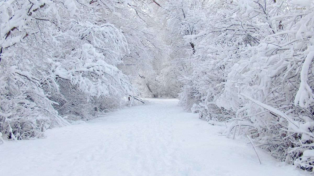 An Acrostic Poem about Winter