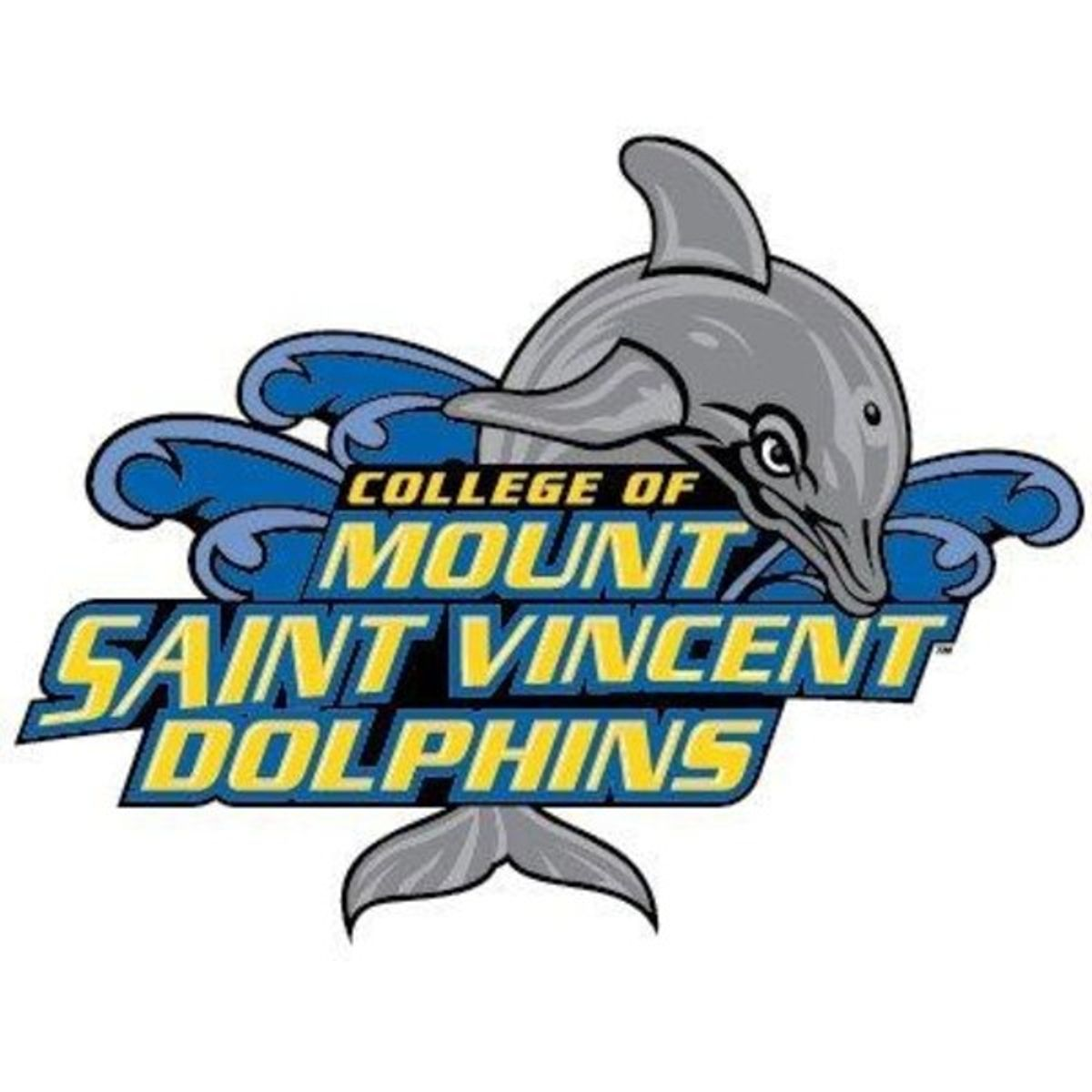 32 Questions I Have For The College Of Mount Saint Vincent