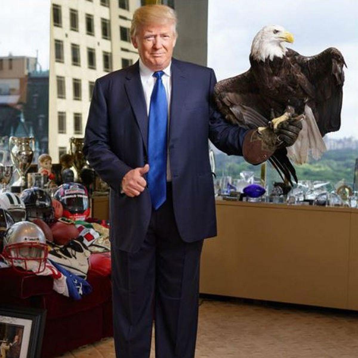Donald Trump 45th POTUS