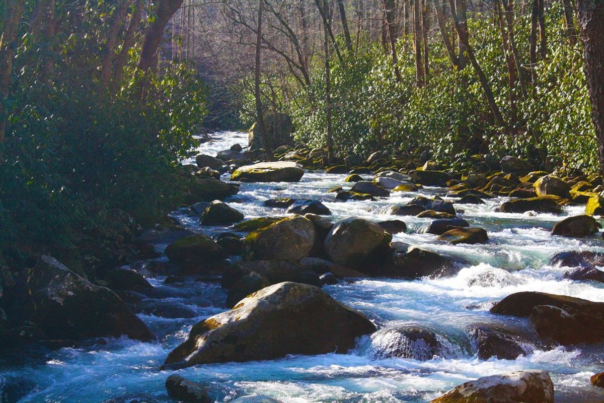 Hiked There, Hiked That: Mouse Creek Falls