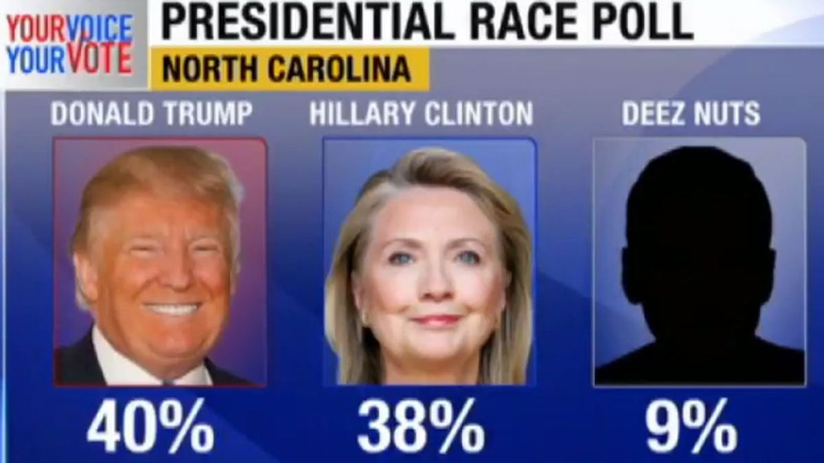 Don't Blame Me, I Voted for Deez Nuts