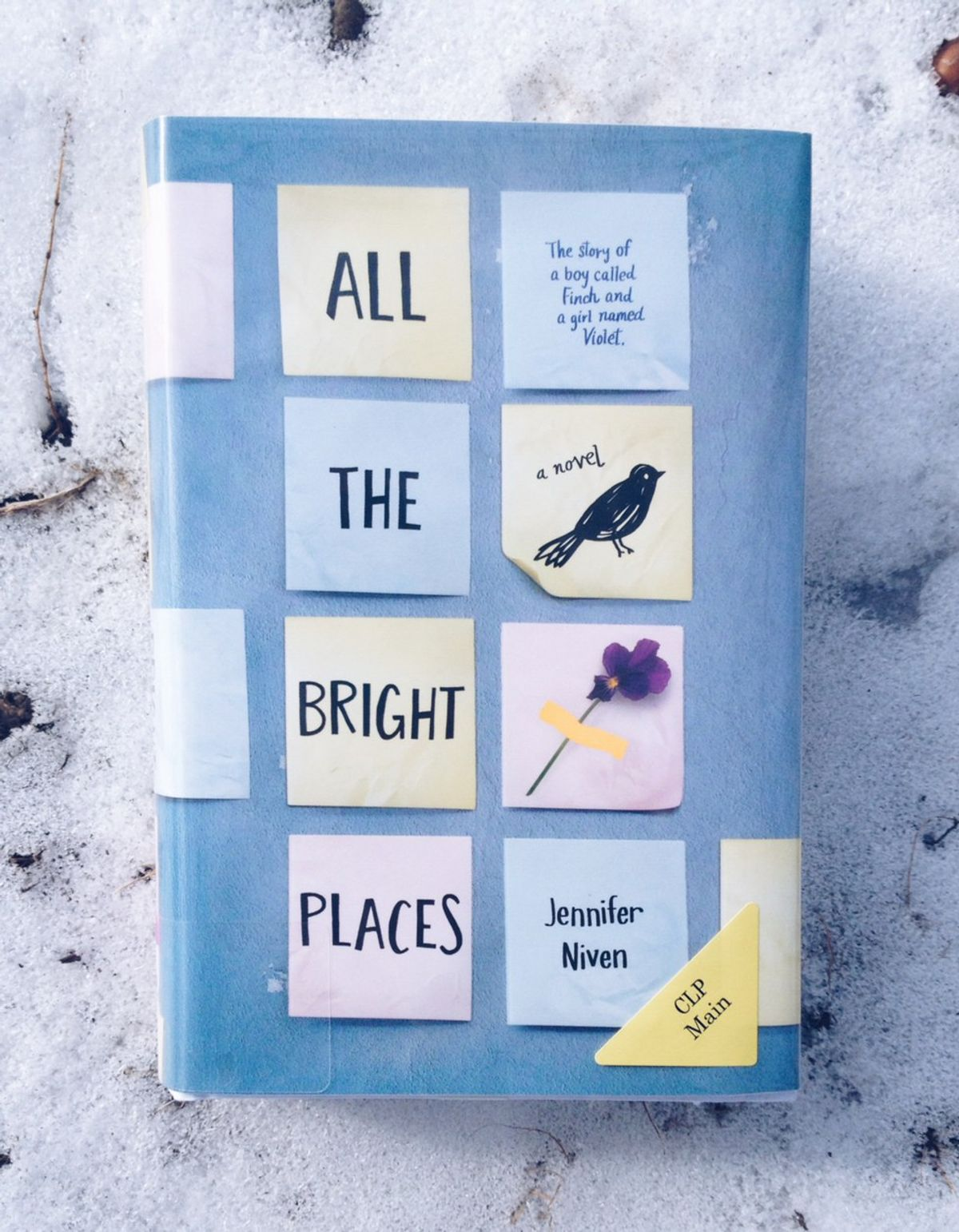 """""""All The Bright Places"""" By Jennifer Niven: Book Review"""