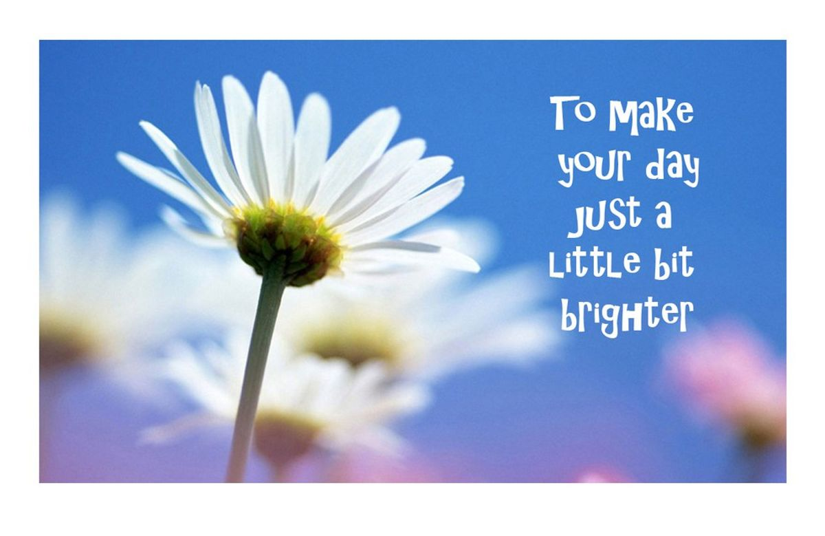 15 Things To Brighten Your Day