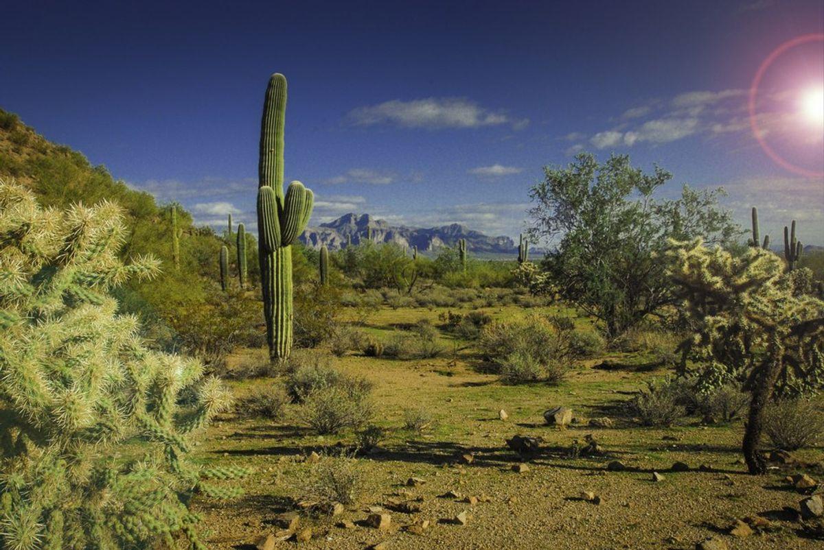 26 Ways You Know You're From Arizona