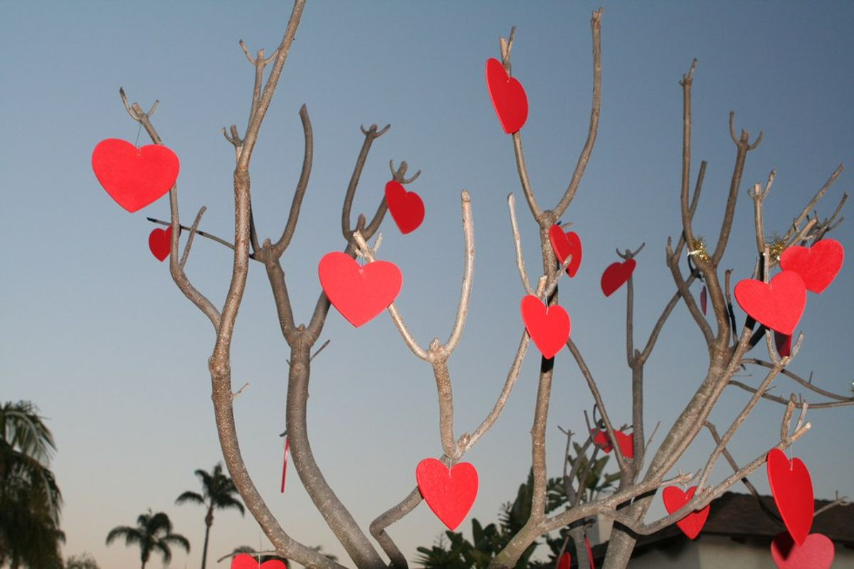 How to Fall in Love this Valentine's Day
