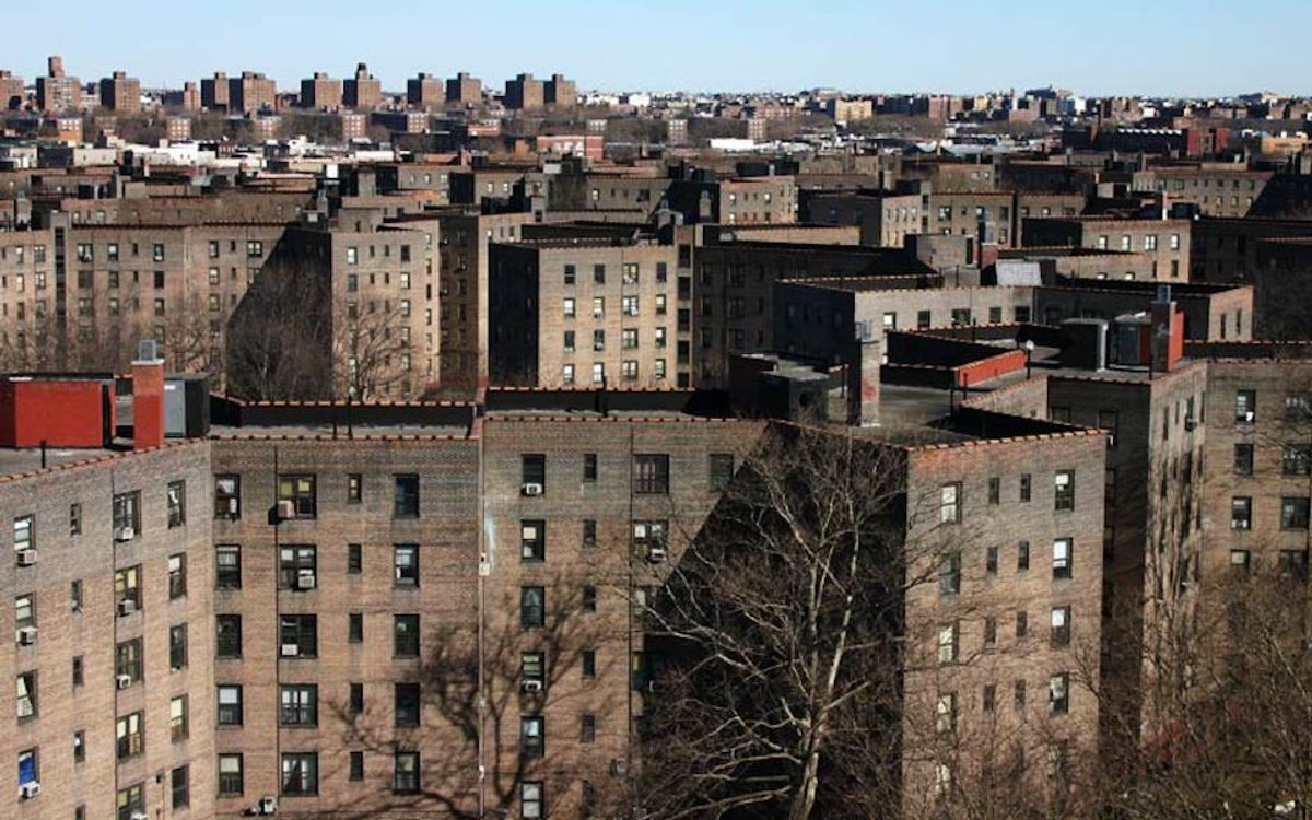 The Next Generation Of NYCHA