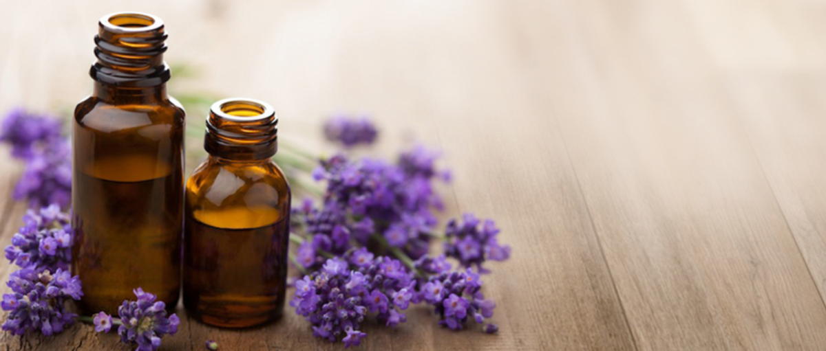 The Beginners Guide To Essential Oils
