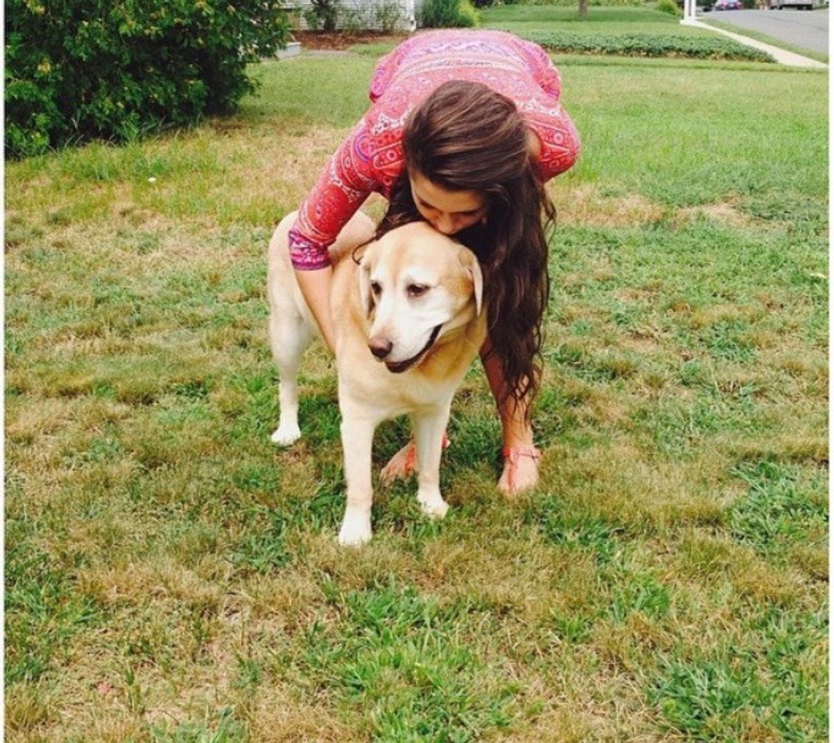 7 Perks Of Coming Home To Your Dog From College
