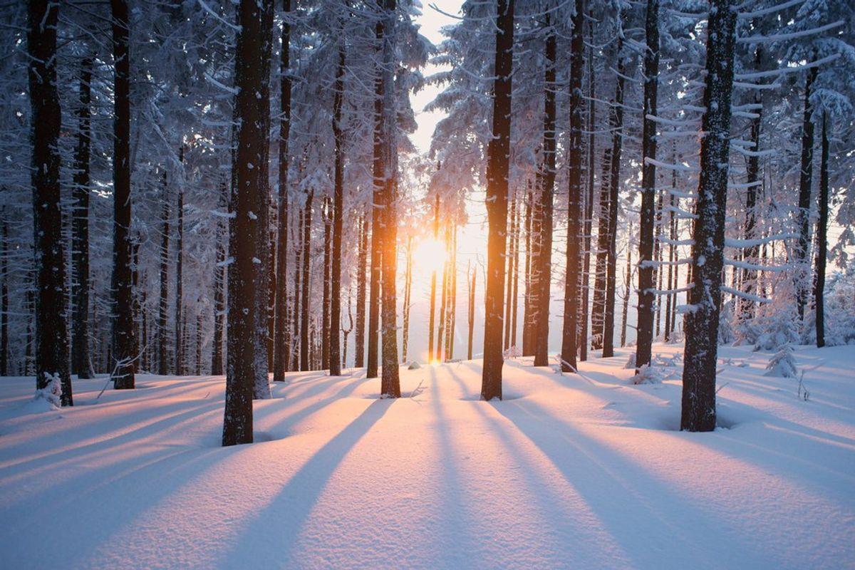 The Seasons of Winter