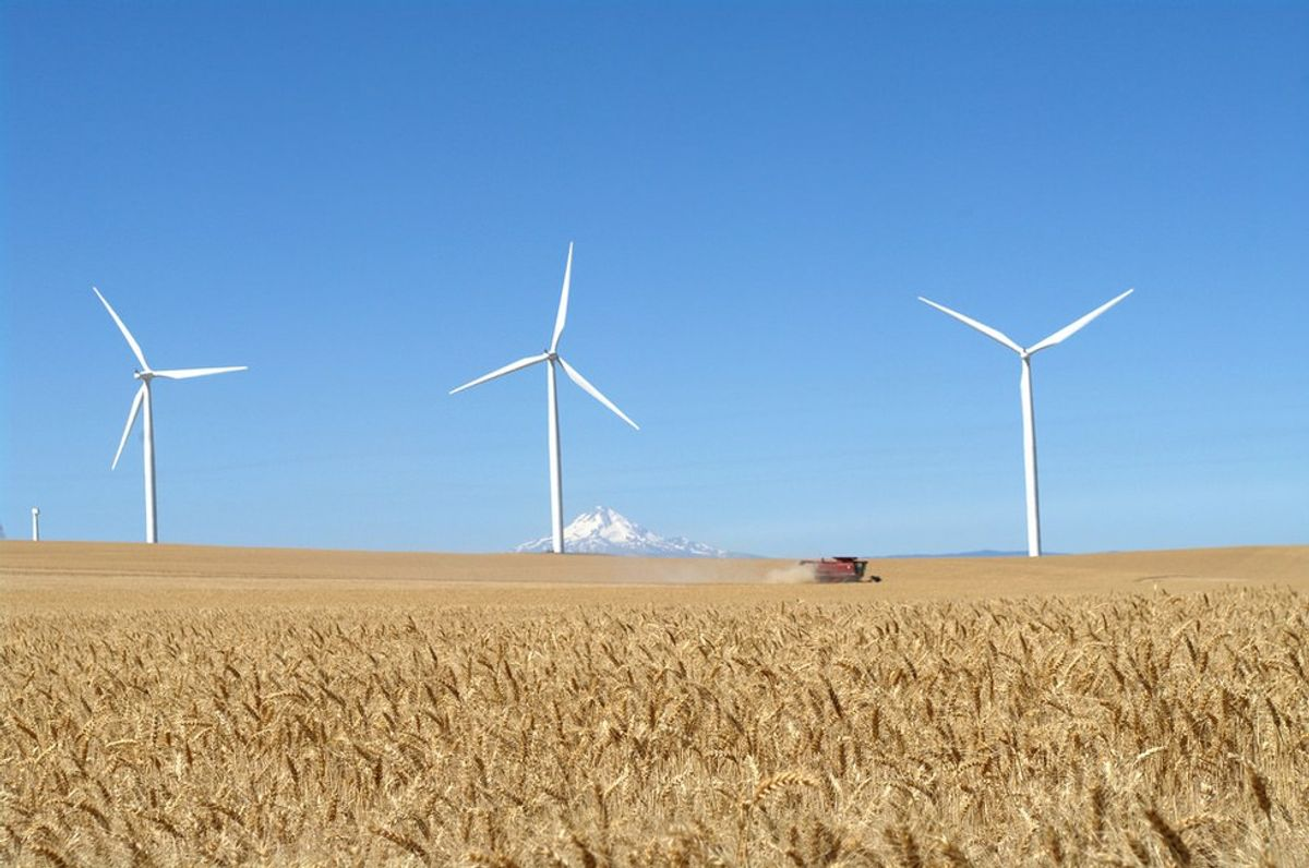 America Needs To Jump On The Renewable Resources Train