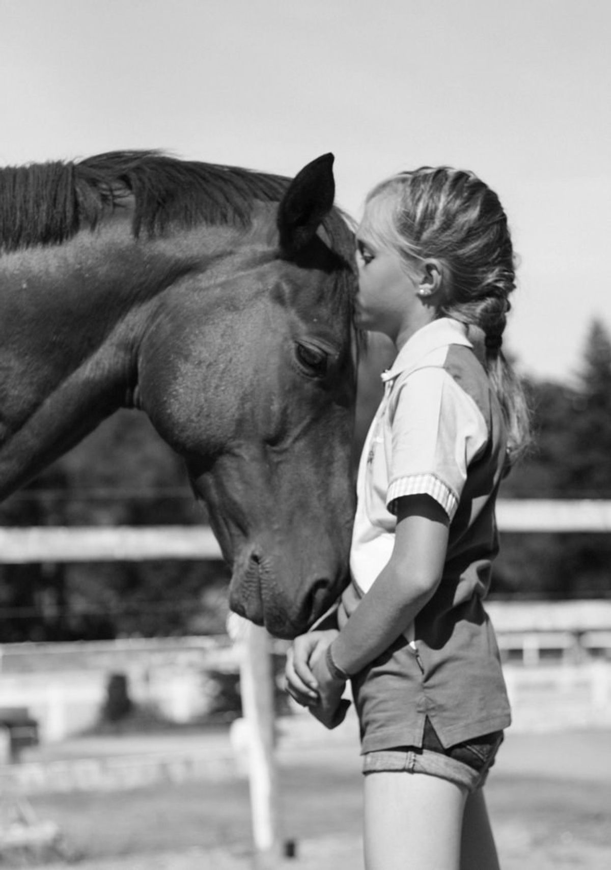 Have You Heard Of Equine Therapy?